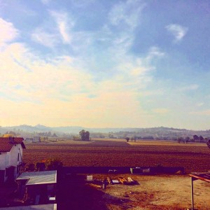 VA327 Monferrato - Casale Monferrato, fraz. San Germano - Foto 12