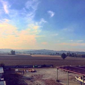 VA327 Monferrato - Casale Monferrato, fraz. San Germano - Foto 11