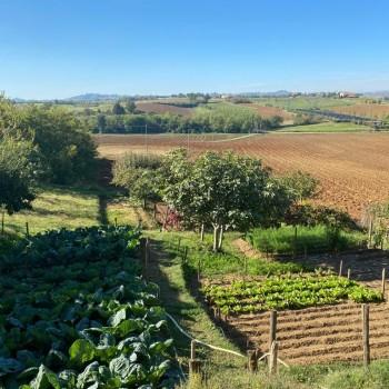 VC442 Monferrato - Occimiano, Cascina Santa Maria 23 - Foto 18